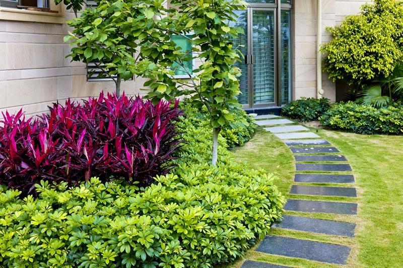 Idee Allee Jardin. Alles De Jardin Design With Idee Allee Jardin ...